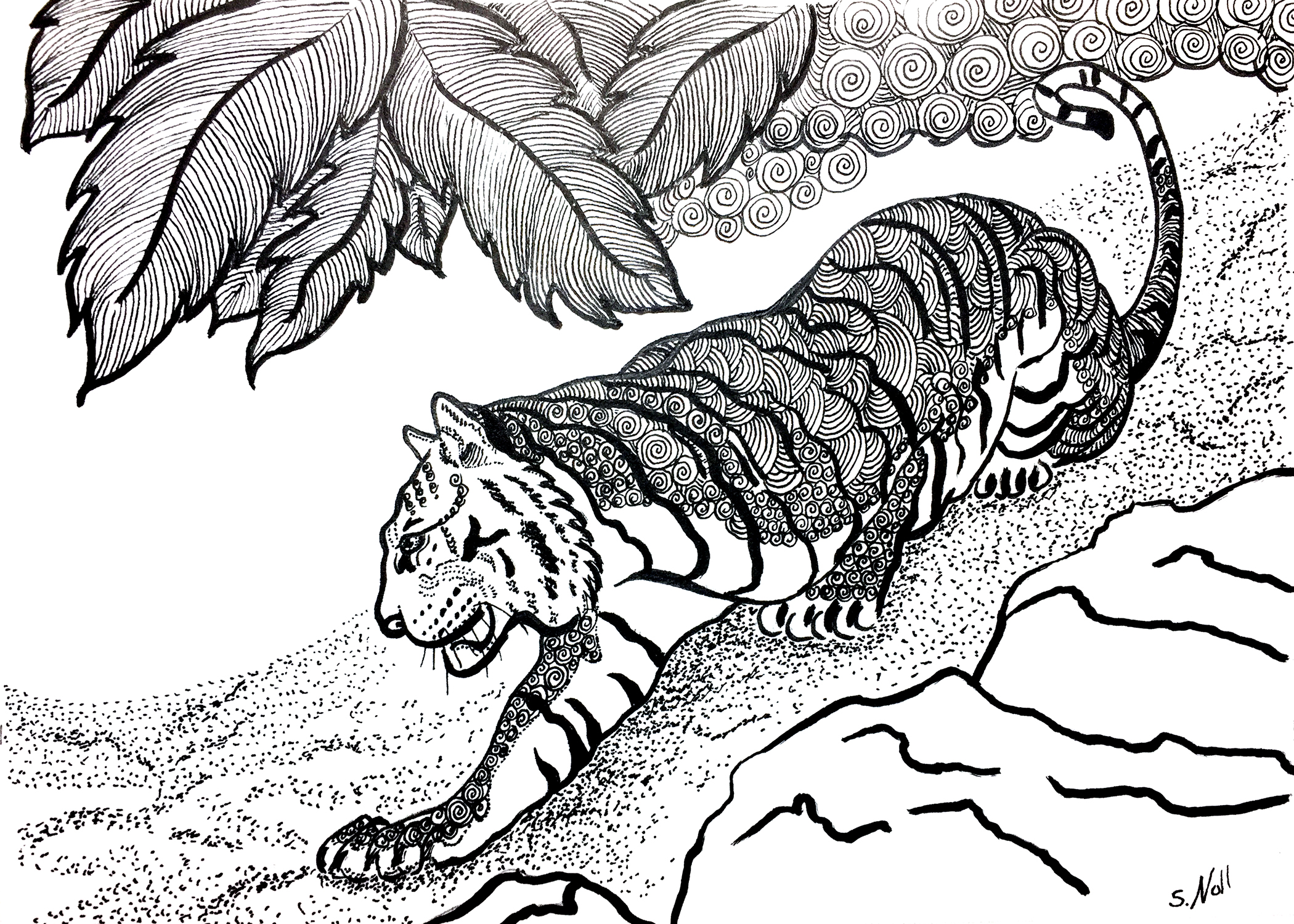 Tiger in Pen & Ink
